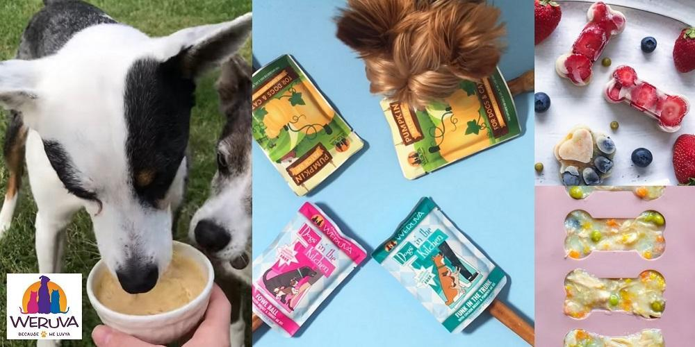 Frozen Weruva recipes for dogs