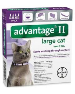 Bayer DVM Advantage II for Cats Over 9lb, 4 Month Supply