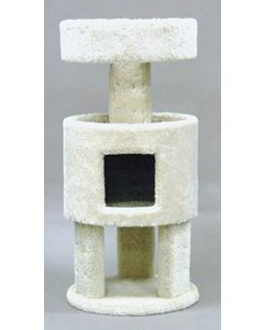 """Classy Kitty Condo with Penthouse 36"""""""