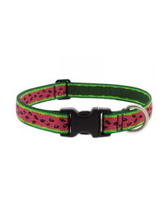 "Adjustable Collar 1"" Wide X 16-28"" Neck Size Watermelon"