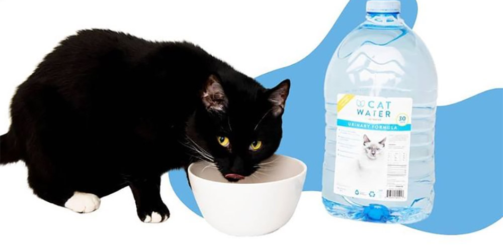 Mineral-free, pH-optimized water for cats
